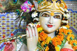 2016.08.19_Krishna